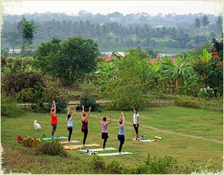 yoga instructor course india
